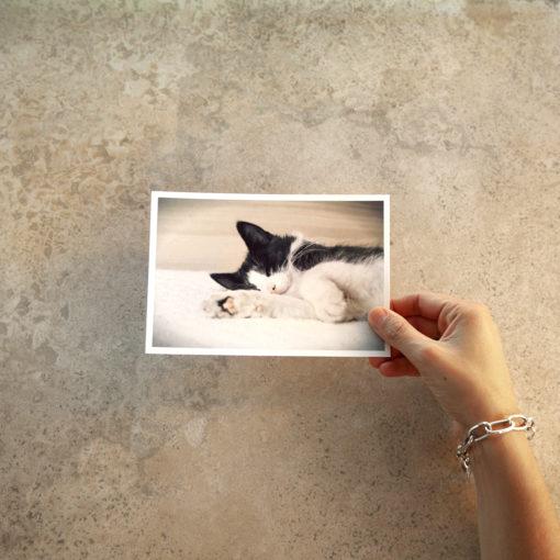 Imprimí tus fotos en 13x18