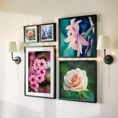Wall Cuadros x 5 cuadros con fotos varilla negra