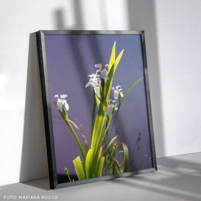 Cuadro-con-fotos-40x50-varilla-negra-vertical